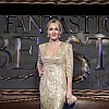 Fantastic Beasts and Where To Find Them European Premiere