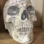A prop skull used on the set of The Green Room